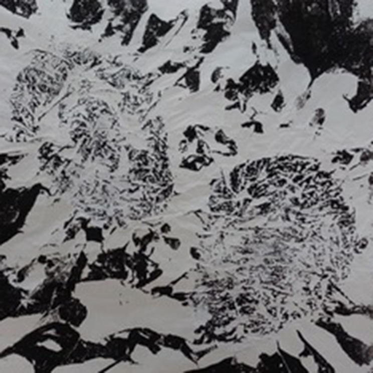 Leitbild-Maja-Plakat